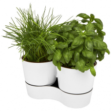 Podwójna docznika kuchenna Herbs